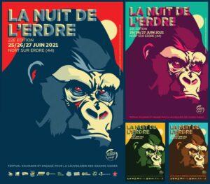 La Nuit De l'Erdre | visuel affiche depuis 2007