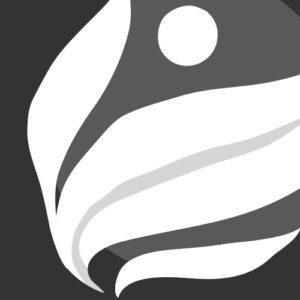 Création naturelle - création logo et déclinaisons
