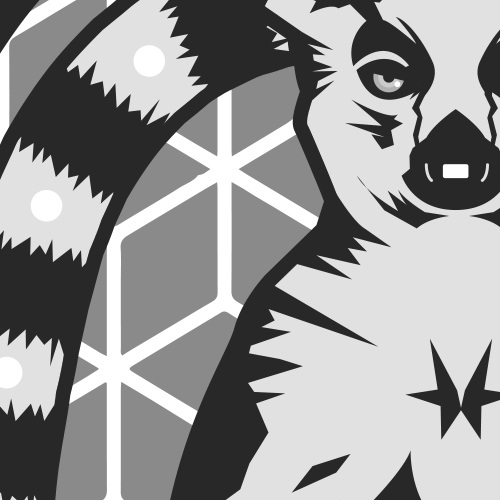 Maki   illustration tee-shirt - boutique Lnde
